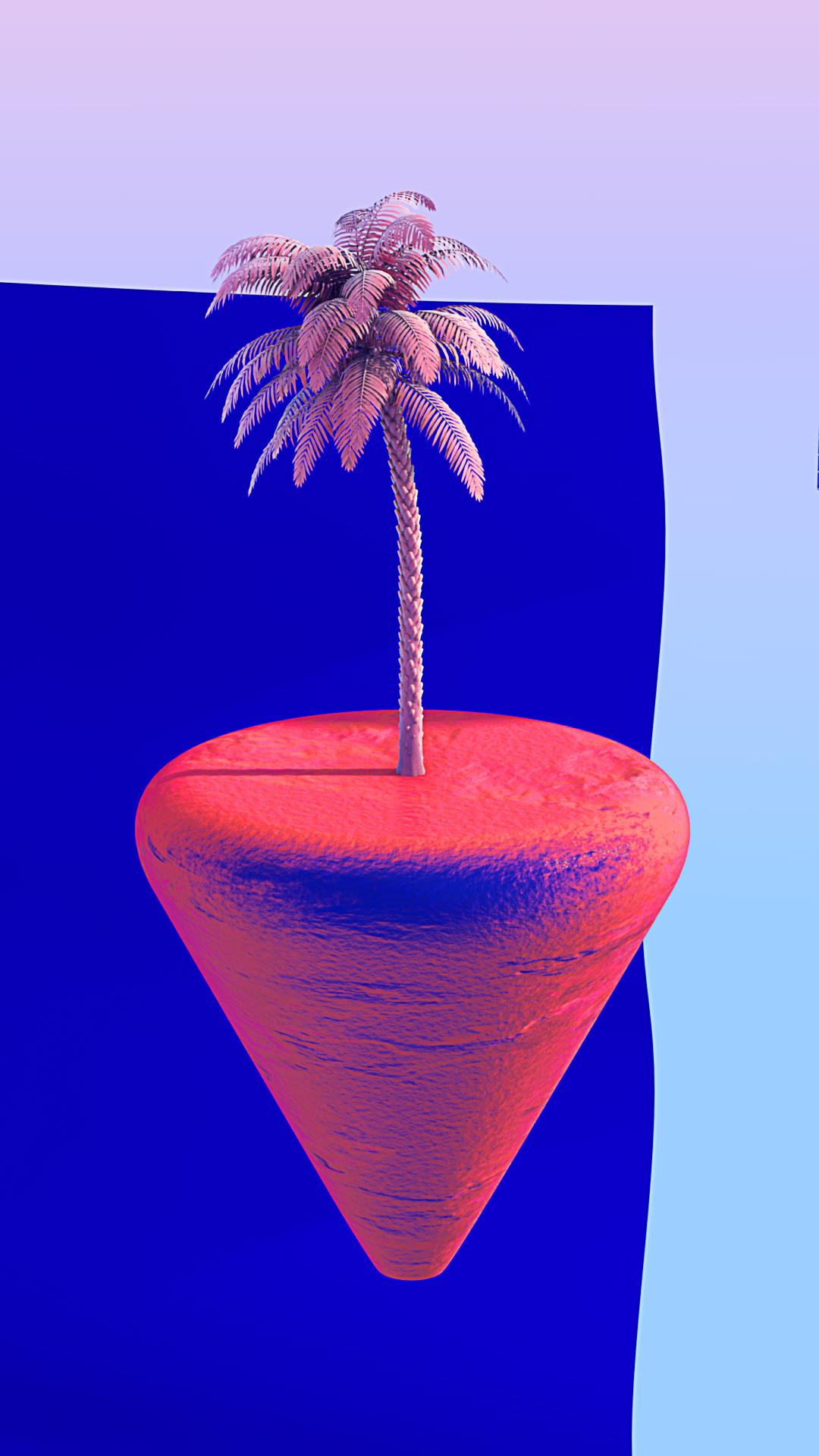 palmier0087